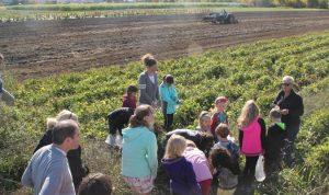 Children Outside in Field